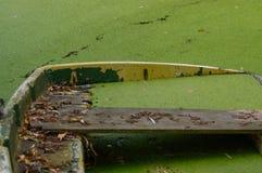 Stronniczo zapadnięty cumujący żelazny rowboat z liśćmi Obrazy Royalty Free