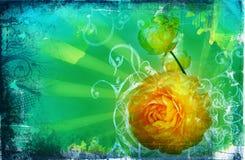 strony plamki crunch Zdjęcie Royalty Free