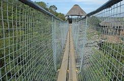 STRONY zawieszenie most NAD ORIBI wąwozem fotografia stock