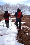 strony zimę Fotografia Royalty Free