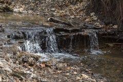 Stroom in de bos Kleine waterval in de wildernis Royalty-vrije Stock Foto's