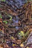 Stroom in de tropische wildernissen van Koh C van Thailand van Zuidoost-Azië stock afbeelding