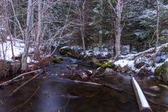 Stroom in de winter, Noorwegen Stock Foto's