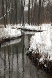 Stroom in de winterhout stock afbeeldingen