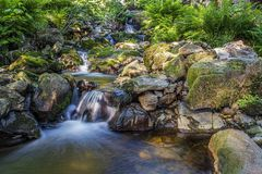 Stroom die een kleurrijk bos doornemen royalty-vrije stock afbeeldingen