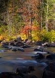 Stroom en rotsen in de herfstbos Royalty-vrije Stock Afbeeldingen
