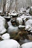 Stroom en sneeuw Stock Foto's