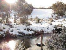Stroom en sneeuw bij Thredbo-dorp Royalty-vrije Stock Foto