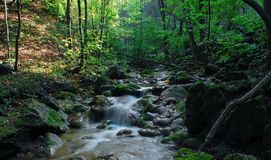 Stroom met kleine watervallen rotsen stock afbeelding