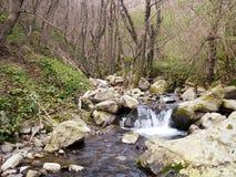 Stroom in onbeschadigde aard, Lunigiana, Noord-Toscanië De lente stock afbeeldingen