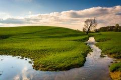 Stroom op een landbouwbedrijfgebied in de landelijke Provincie van York, Pennsylvania royalty-vrije stock afbeeldingen
