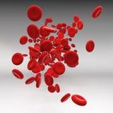 Stroom van bloedcellen Stock Afbeelding