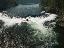 Stroomversnelling in de Yellowstone-Rivier Stock Fotografie