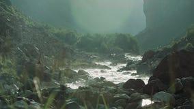 Stroomversnelling van de berg de steenachtige stroom met groene struiken op kust stock footage