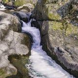 Stroomversnelling van een rivier Gredos stock afbeeldingen