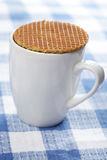 Stroopwafel on the cup Stock Image