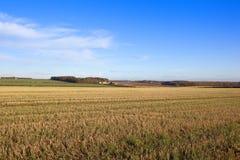 Strostoppelveld met landbouwbedrijf Stock Foto