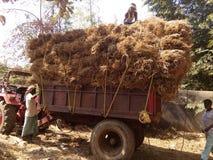 Strow tractor stock photos