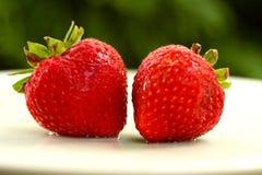 strowberries 2 Стоковое Фото