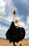 Struś niesie młodej dziewczyny na jego plecy 002 Zdjęcia Stock