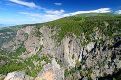 Sträubendes Maultier fällt in Wyoming Stockfotos