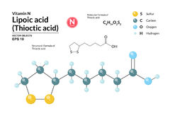 Structural chemical molecular formula and model of Lipoic acid. Atoms are represented as spheres with color coding isolated. On background. 2d and 3d Royalty Free Stock Images