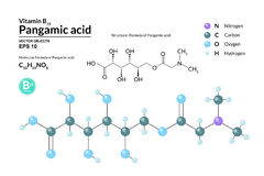 Structural chemical molecular formula and model of Pangamic acid. Atoms are represented as spheres with color coding. On background. 2d, 3d visualization and Stock Photos