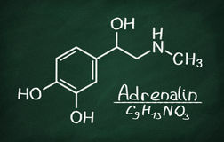 Structural model of Adrenalin. On the blackboard Royalty Free Stock Image
