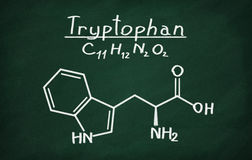 Structural model of Tryptophan Royalty Free Stock Images