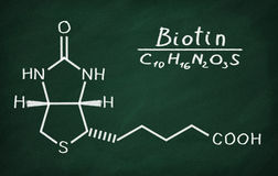 Structural model of Vitamin B6 Biotin. On the blackboard Stock Photography
