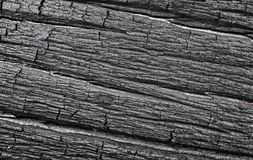Structure of the burnt tree Stock Photography