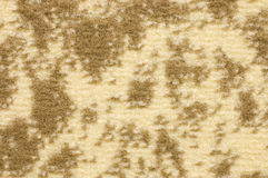 Structure of a colour beautiful carpet Royalty Free Stock Images