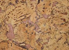 The structure of cork coverings Stock Image