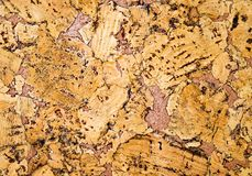 The structure of cork coverings Royalty Free Stock Photo