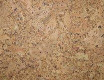 The structure of cork coverings Royalty Free Stock Image