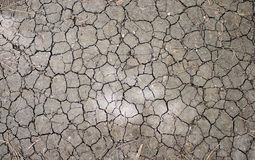 Structure cracked earth Royalty Free Stock Photography