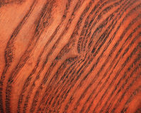 Structure of a cut of a tree Royalty Free Stock Photography