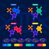Structure d'ADN, génome ordonnançant le concept Laboratoire de nanotechnologie et de biochimie Hélice de molécule d'ADN, génome o illustration libre de droits