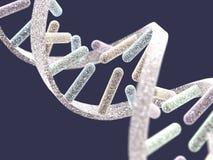 Structure d'ADN sur le fond bleu-foncé Images stock