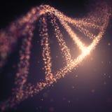 Structure de molécule d'ADN Photos libres de droits