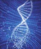 Structure de molécule d'ADN Photo libre de droits