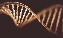 Structure de molécule d'ADN Photos stock