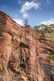 Structure de roche au temple de Sinawava Zion National Park photos libres de droits