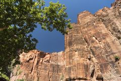 Structure de roche au temple de Sinawava Zion National Park images libres de droits
