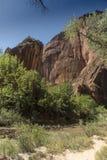 Structure de roche au temple de Sinawava Zion National Park image stock