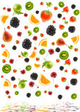 Structure from different fruit Royalty Free Stock Image
