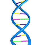 Structure of DNA Stock Photos