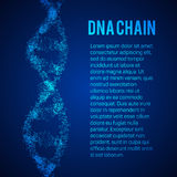 The structure of the DNA molecule and neurons Royalty Free Stock Images