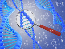 Structure of DNA under a magnifying glass. 3D render Royalty Free Stock Images