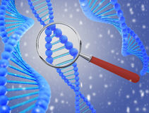 Structure of DNA under a magnifying glass. 3D render Royalty Free Stock Photography